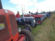 Some of the 100 tractors on show