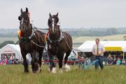 Ploughing demonstration
